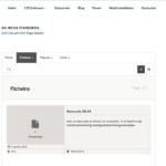 Front-end personalizada com o seu site público